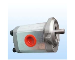 Hydraulic gear pumps HGP1A-F8R